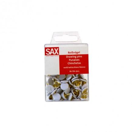 pinezes-sax-xromatistes-80tem-tetragono.jpg