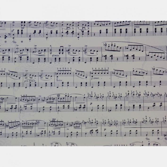 xartoni-50x70cm-notes-2plis-opsis-tetragono.jpg