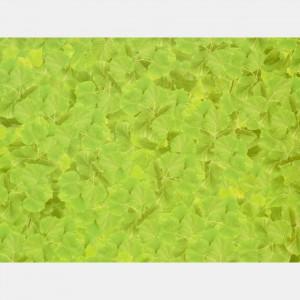 xartoni-50x70cm-prasina-fulla-2plis-opsis-tetragono.jpg
