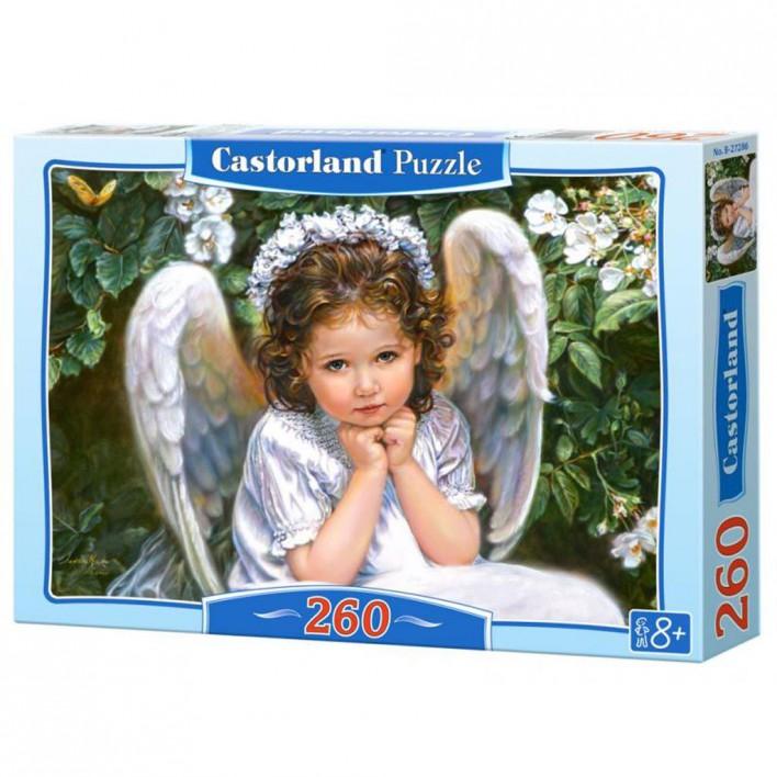 puzzle-castorland-260-tetragono.jpg