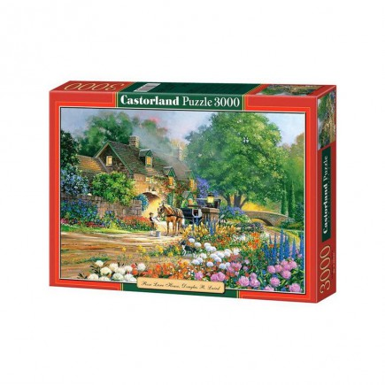 puzzle-castorland-rose-lane-house-tetragono.jpg