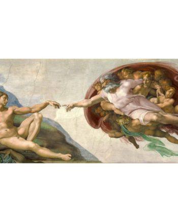puzzle michelangelo creazione di Adamo tetragono