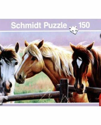 puzzle schmidt 150tem tetragono