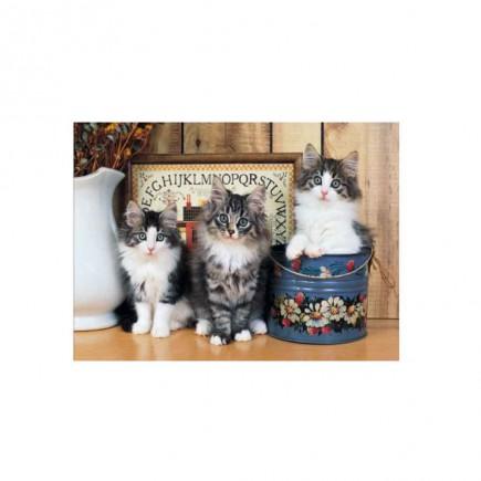 puzzle-norwegian-cats-tetragono.jpg
