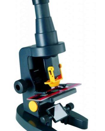 set mikroskopio MS015 tetragono 1