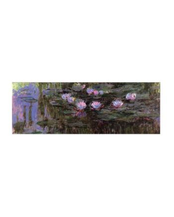 Panorama Puzzle RICORDI ART Nympheas by Monet 2802N25010 - 1000 κομμάτια